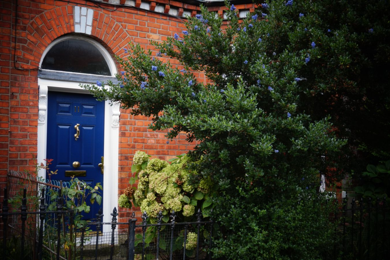 entrance doors near me hayes